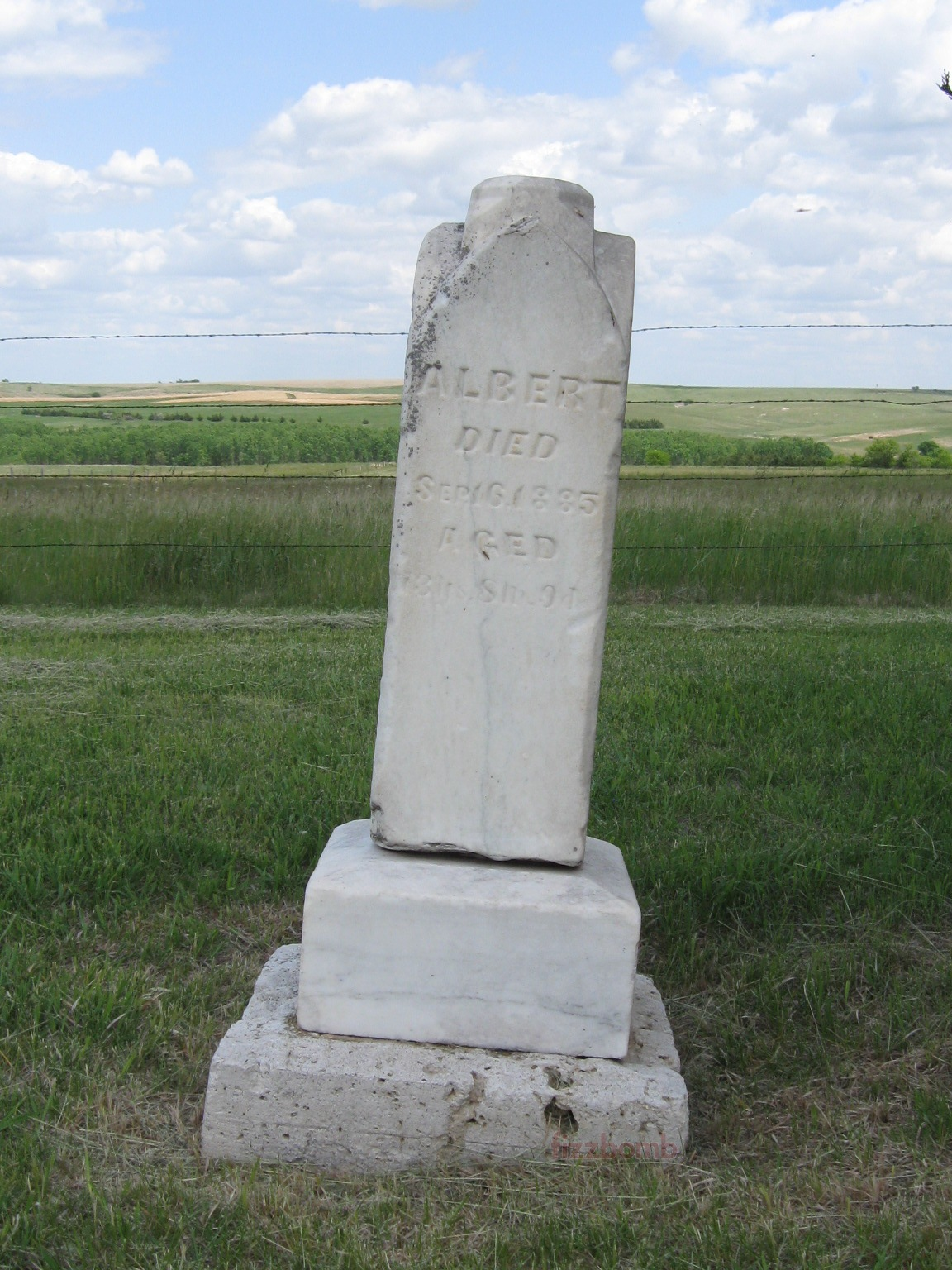 Albert Cope's grave marker